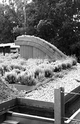Green Technology:Green Roof Systems
