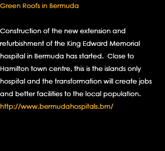 Green Roofs in Bermuda Text